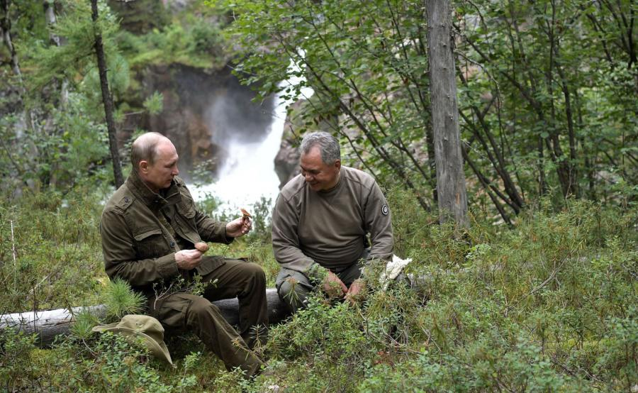 Władimir Putin na grzybach