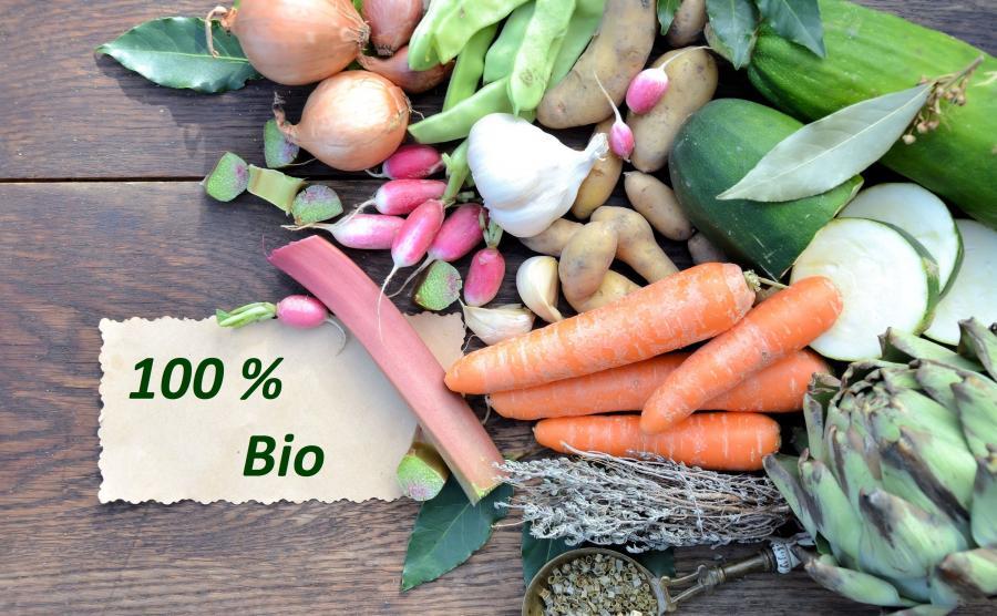 Warzywa ekologiczne, bio