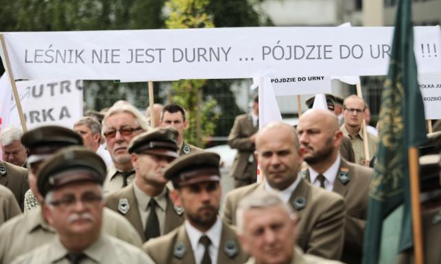 PiS chce sprywatyzować Lasy Państwowe?