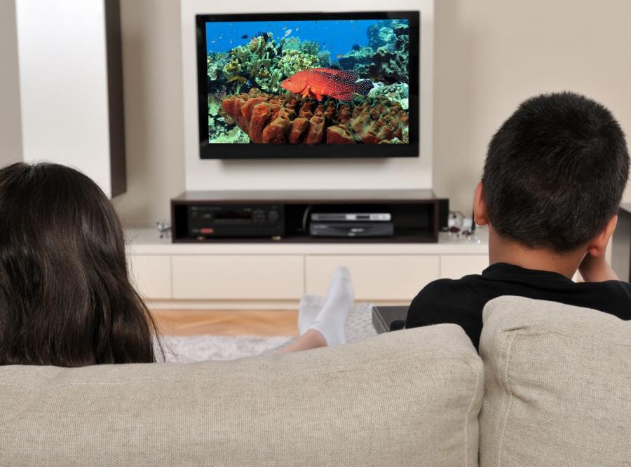 Polacy rezygnują z telewizorów