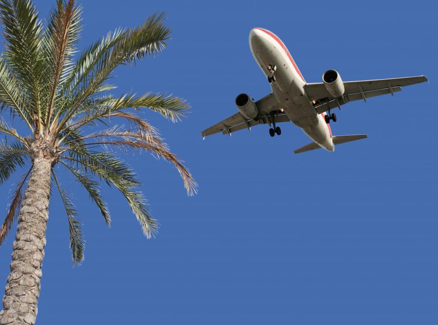 Z kim jechac na wakacje?