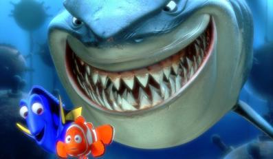 Rybka zwana Nemo przypłynie po raz drugi
