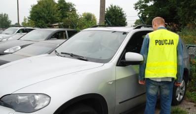 Policja wykryła dziuplę pełną kradzionych samochodów