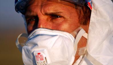 Ptasia grypa ciągle groźna