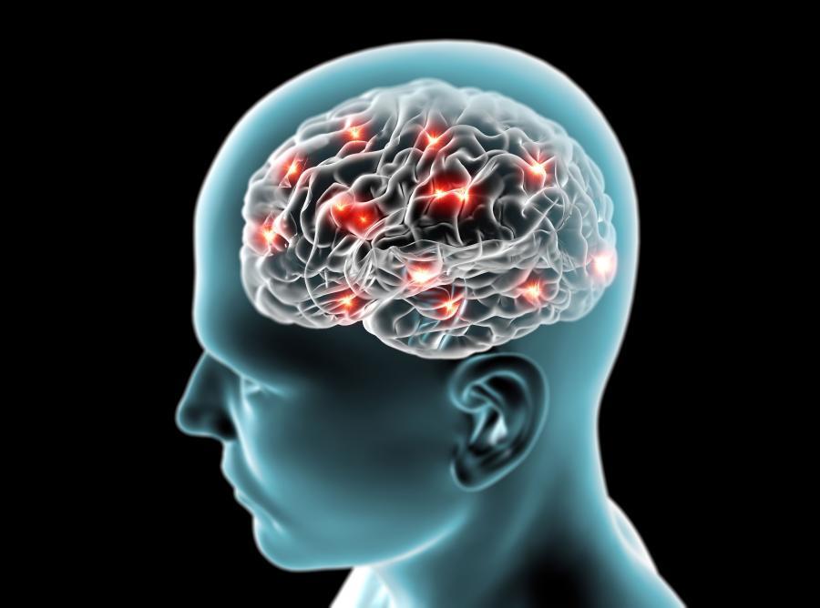 1. MIT: Wykorzystujemy mózg tylko w 10 proc.