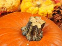 PRZEPISY na pyszne dania z dynią, czyli Halloween w kuchni