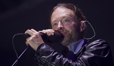 Powolne zwierzę Radiohead