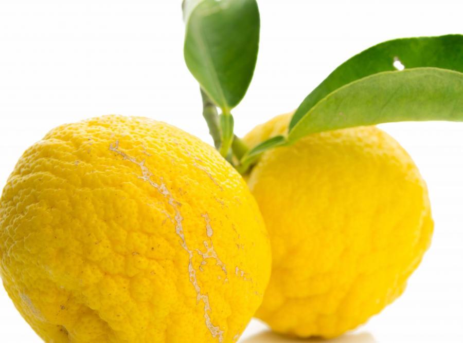 11. Cytryny, pomarańcze i limonki
