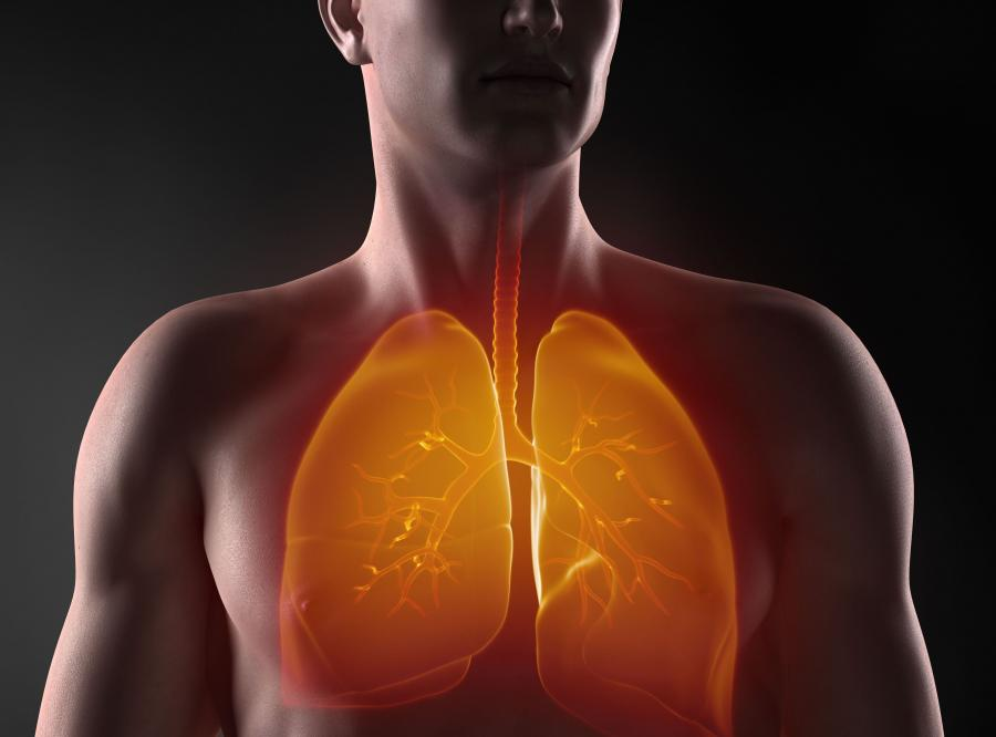 Choroby serca i płuc