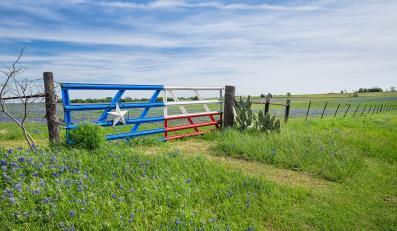 Flaga Teksasu na bramie