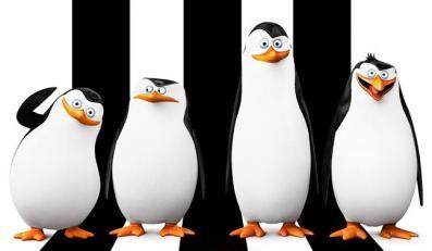 """Zobacz cztery minuty """"Pingwinów z Madagaskaru"""""""