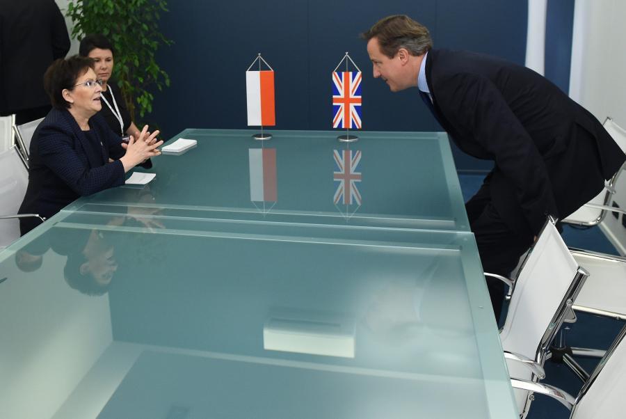 Ewa Kopacz i David Cameron