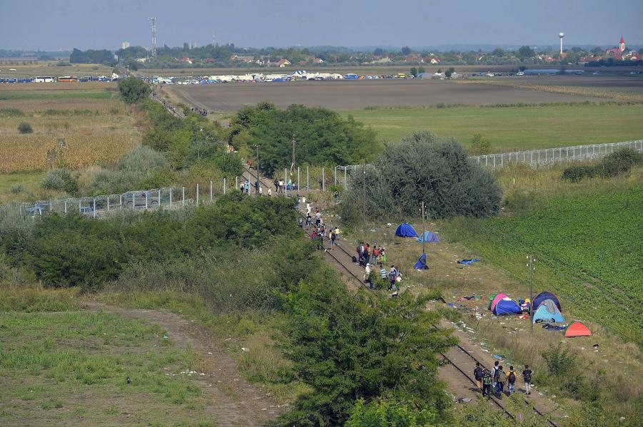 Imigranci na serbsko - węgierskiej granicy