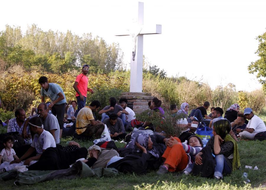 Imigranci niedaleko chorwackiego miasta Tovarnik