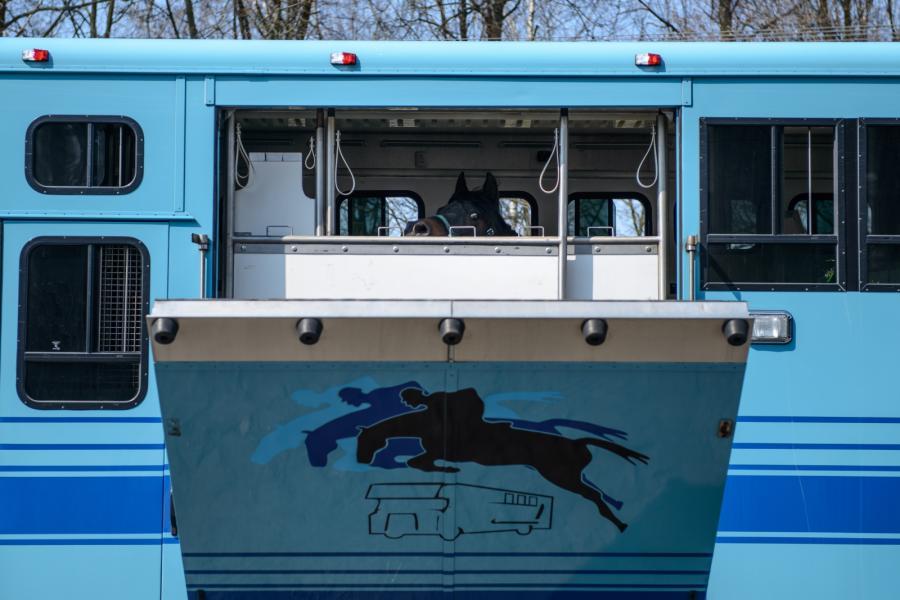 Ciężarówka do wywozu koni